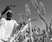 AFRIQUE – Imaginer l'industrialisation de l'Afrique